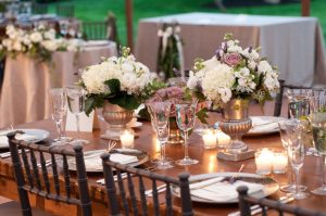 Social / Wedding